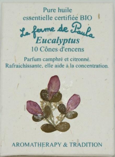 Eucalyptus Bio - Cônes d'encens