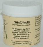 SHATAVARI - 100 capsules